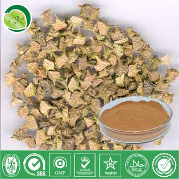 I Want To Sell Tribulus Terrestris Extract