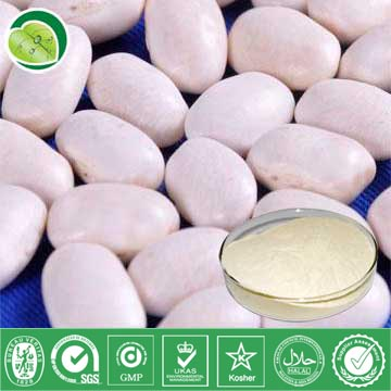 I Want To Sell White Kidney Bean Extract