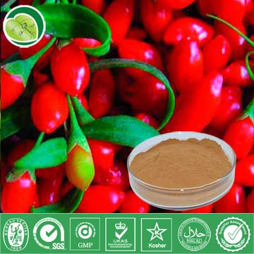 I Want To Sell Wolfberry Extract