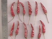 Indapur With Stem Our Wide Range Of Dried Red Chili Product Is Available In Various Varieties Grades