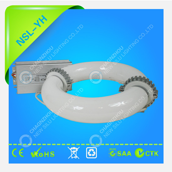 Induction Lamp Ring Environmentally Friendly