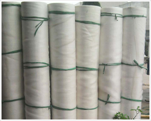 Insect Screen Wire Netting Iron Exporter