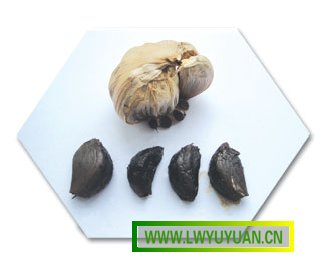 Japanese Black Garlic