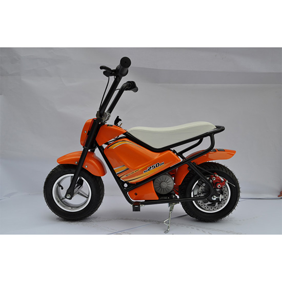 Kid Electric Scooters 250w