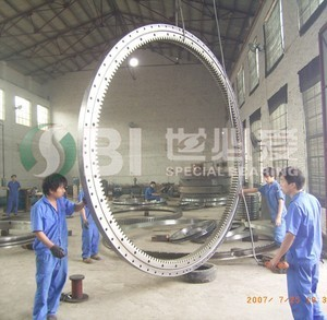 Large Size Slewing Ring Bearng
