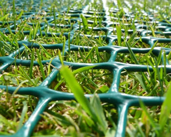 Lawn Protection Mesh Easy Installation And Cost Effective