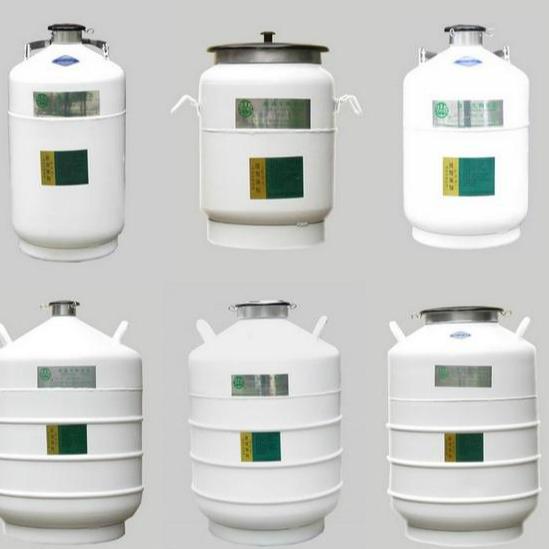 Liquid Nitrogen Container For Sale