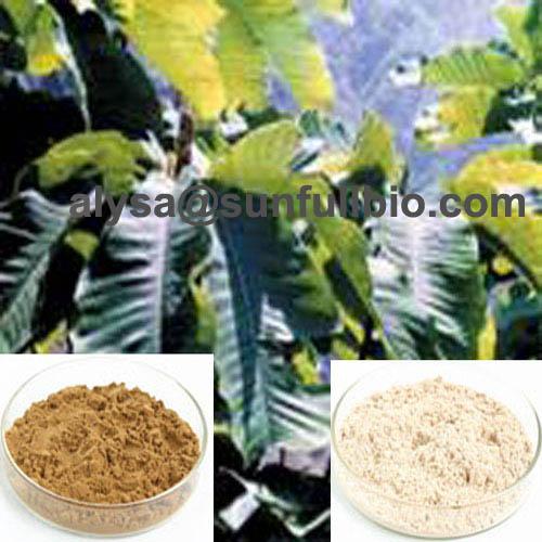 Magnolia Bark Extract Magnolol Hinokiol