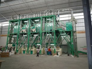 Maize Mill And Flour Processing Machine