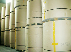Many Grades Of Kraft Paper