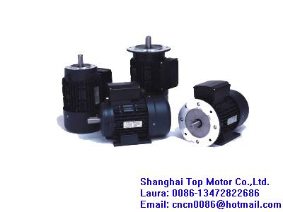 Mc Series Single Phase Capacitor Start Asynchronous Motors