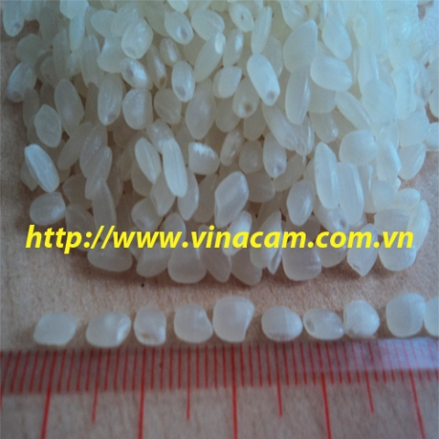 Medium Grain Rice 5pct Broken
