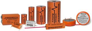 Minamoto 3 6v Lithium Battery