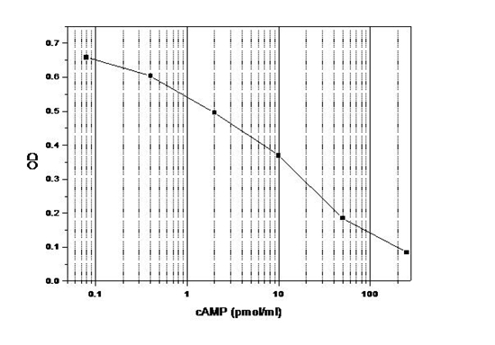 Monoclonal Anti Camp Antibody Based Direct Eia Kit Without Acetylation