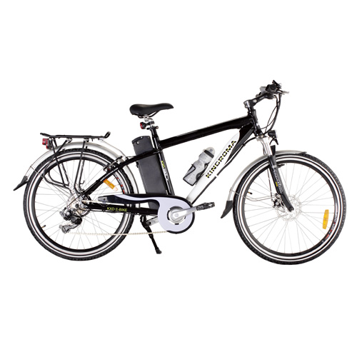 Mountain Electric Bike With Brushless Motor