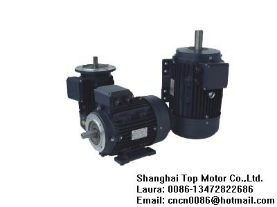 Ms Series Three Phase Asynchronous Motors