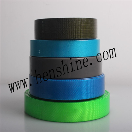 Multiple Color Polyester Webbing Applicant For Dog And Horse