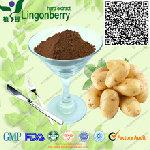 Natural Potato Protein Powder