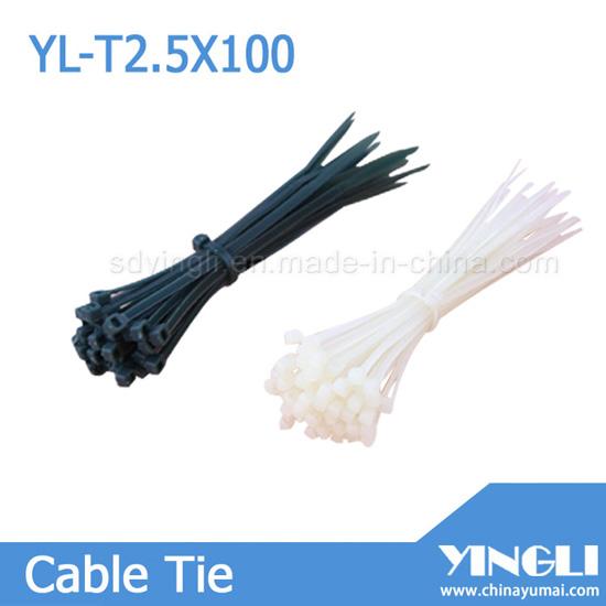 Nylon Cable Tie 2 5x100mm