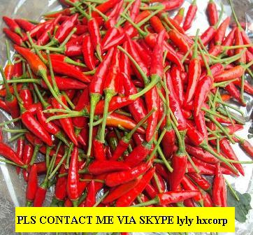Offer Fresh Small Chilli From Viet Nam