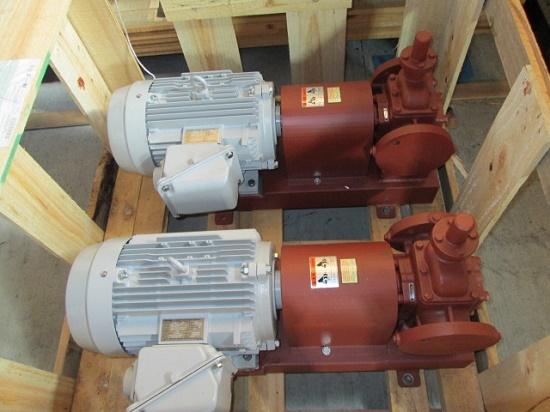 Oil Pump X 2 Sets