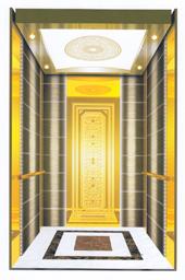 Passenger Elevator D18809