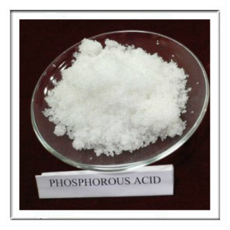 Phosphorous Acid Cas 13598 36 2