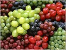 Plant Fruit Herbs Of Grape Seed Extract
