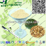 Plant Protein Meal Replacement Powder