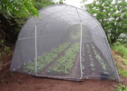 Plastic Insect Screen Resist Uv Rays And Insects