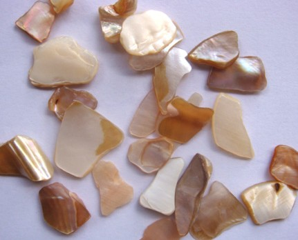 Polished Mother Of Pearl Chips