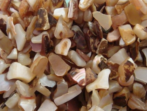 Polished Mother Of Pearl Chips With Dust