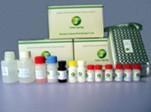 Porcine Encephalitis Virus Elisa Test Kit