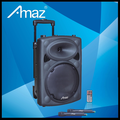 Portable Pa Speaker Rechargeable