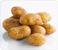Potatoes Egyption Farms Highline For Import And Export