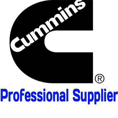 Professional Cummins Supplier In China Diesel Engine Spare Part K38 K19 Nt855 M11