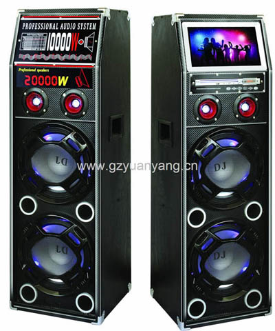 Professional Sound Speaker With Tv Dvd