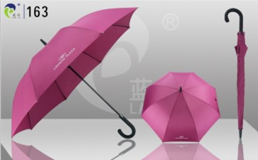 Promotional Straight Umbrella 163