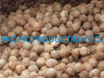 Provide Desiccated Coconut And Fruits With Good Price