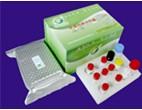 Prrsv Antibody Elisa Test Kit