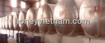 Pure Natural Honey From Top Vietnam Factory