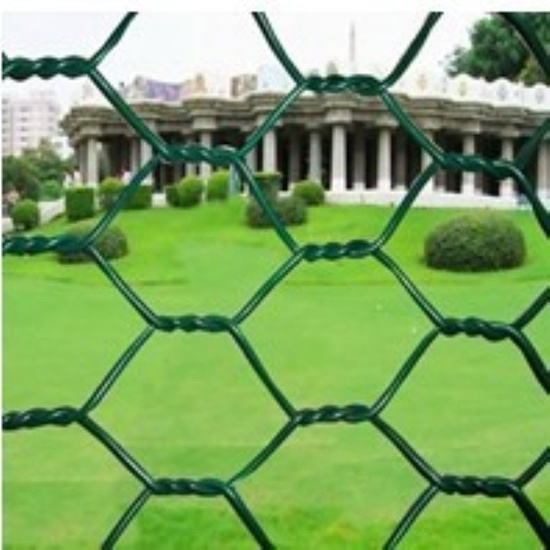 Pvc Coated Chicken Wire Used For Poultry Farms Birds Cages Tennis Courts