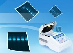 Quickclean Ii Plasmid Miniprep Kits
