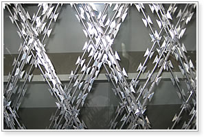 Razor Wire Fence Protection Mesh Manufacturer Exporter