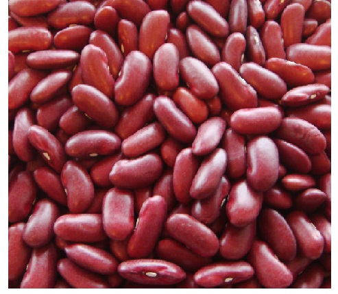 Red Kidney Beans Rajma
