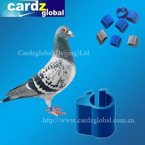 Rfid Animal Tag For Pigeon And Chicken Duck