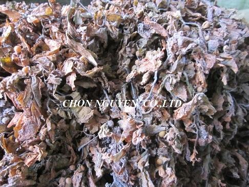Sargassum Seaweed Ulva Gracilaria Ecottonii Powder