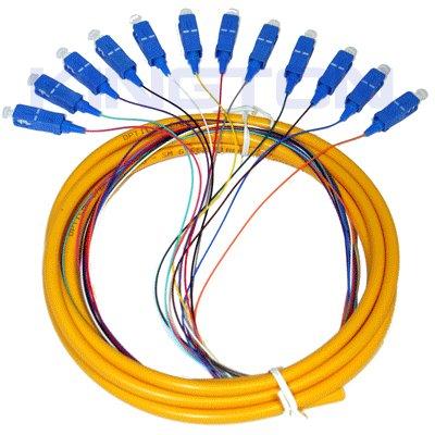 Sc Sm 12c Fan Out Fiber Pigtail