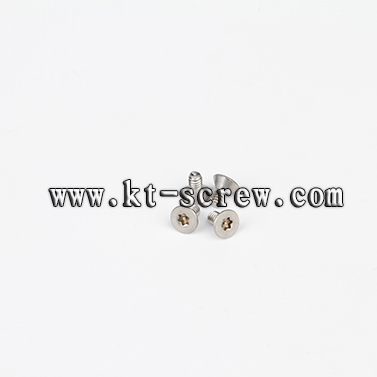 Security Screw Of High Spray Test Stainless Steel