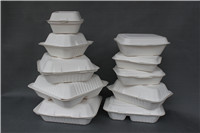 Sell Biodegradable Disposable Sugarcane Fiber Food Containers